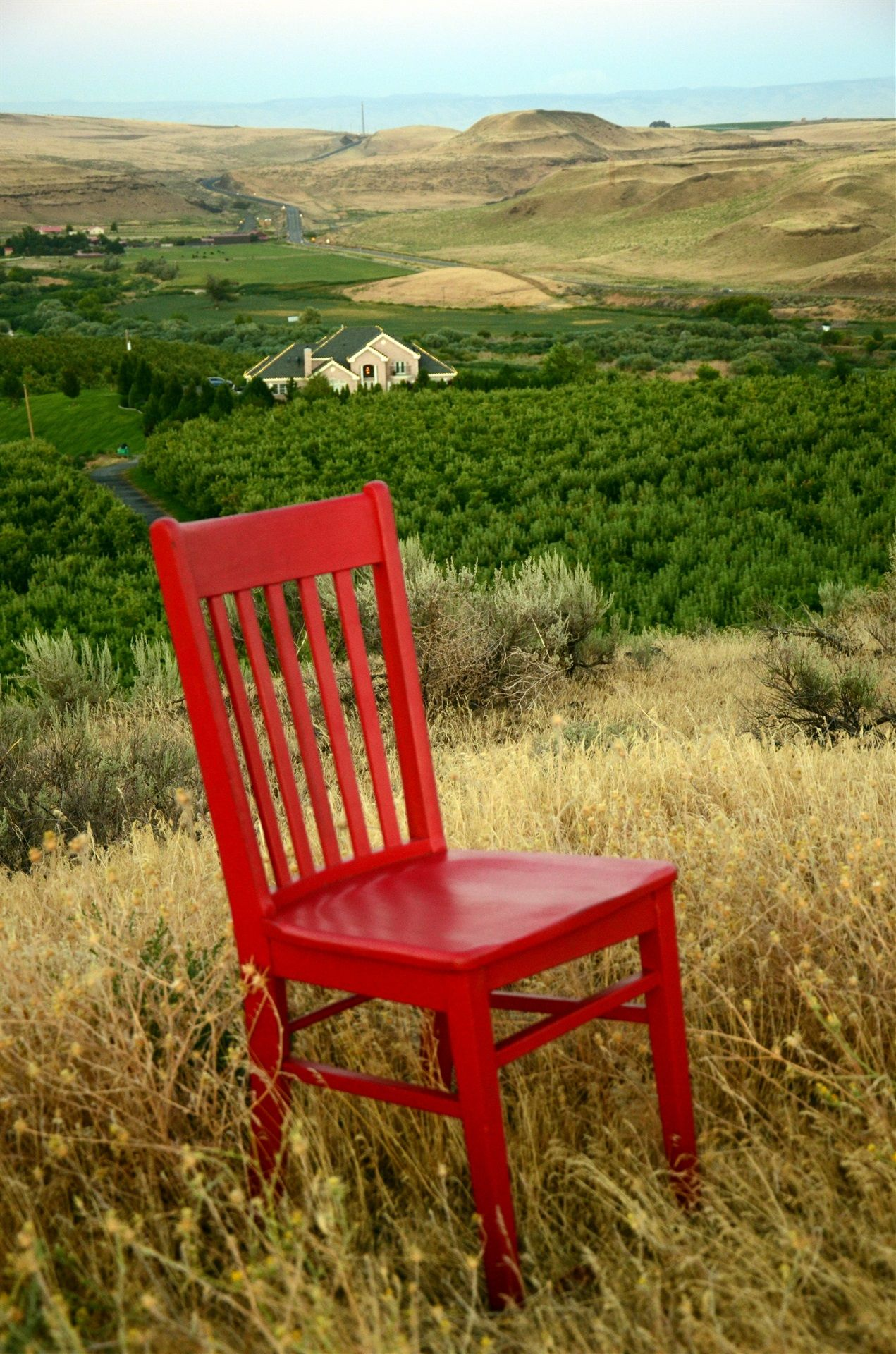 Red chair in a field with the Mansion and forested area around it in the background