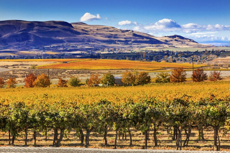 The Best Walla Walla Wineries to Visit This Fall